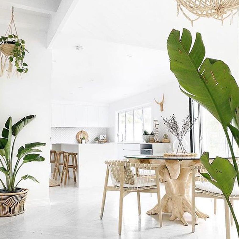 maison décoration nature