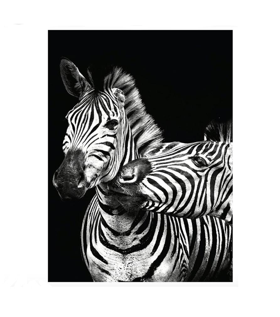 ANIMAL - Tableau en métal noir et blanc