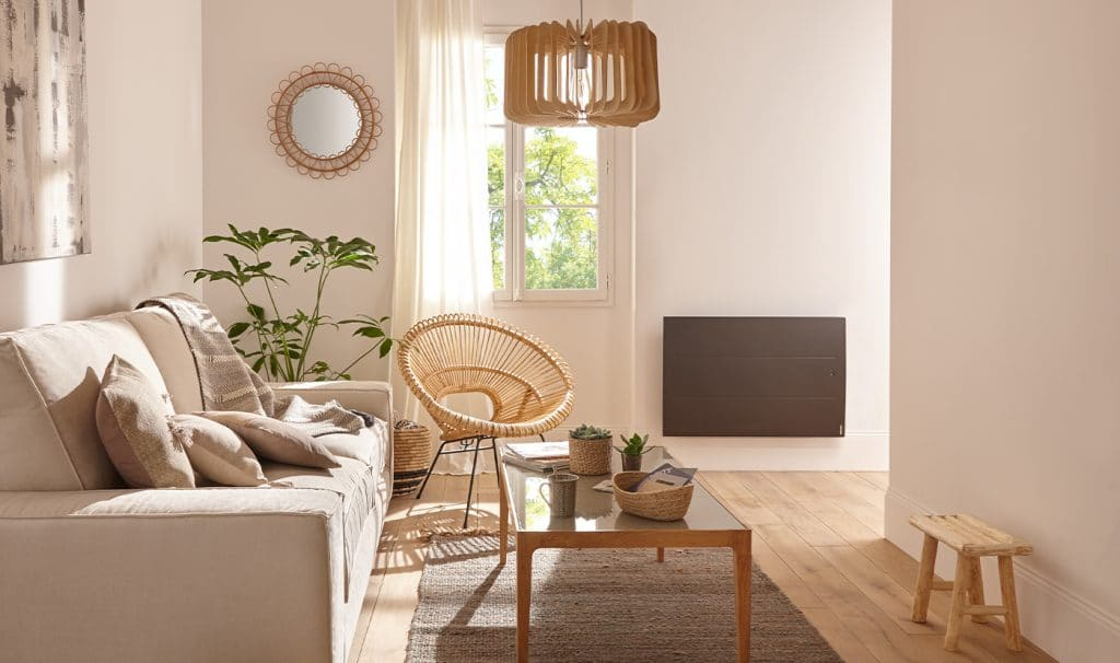 salon confort maison